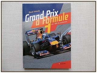 David Selucký - Grand Prix a Formule 1